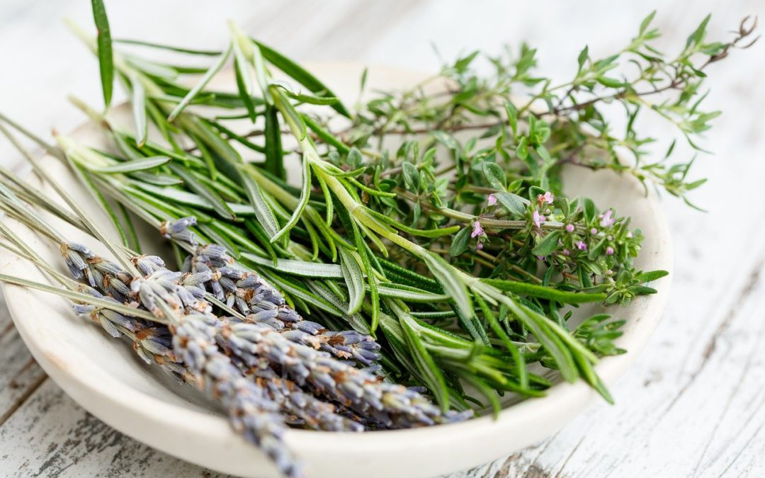 Herbal Remedies for Aches and Pains
